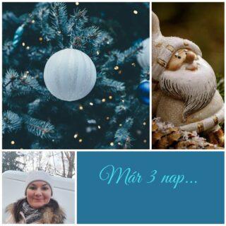 Már 3 nap van nálunk Karácsonyig, amíg lehetőségünk van még a bútorokat ünnepek előtti érkezéssel kiszállítatni. 🎄🎄🎄