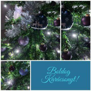 Boldog Karácsonyt Kívánunk! 🎄🎄🎄